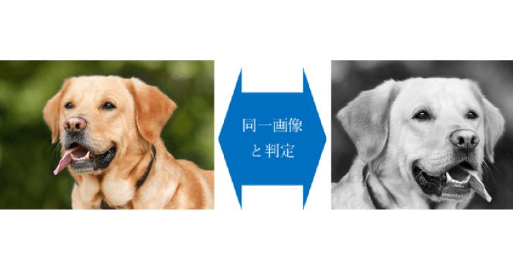 まとめサイトの無断転載を検出するAI 元画像の加工なども見抜く