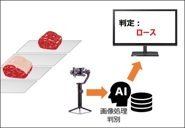 コンベアに流れる肉の部位を判別する装置 ロースをAIが見分ける